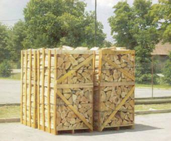 legna di Faggio