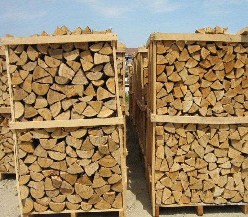 lemne-022